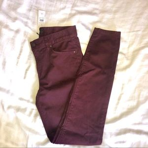 NWT Ann Taylor - THE SKINNY modern fit pants